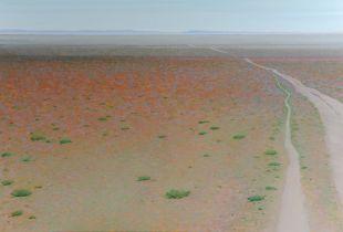 Ohne Titel, , 100 x 150 cm, 2012, Öl auf Leinwand